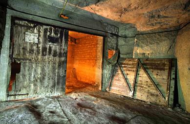 Caves champignon de paris for Porte cave bois